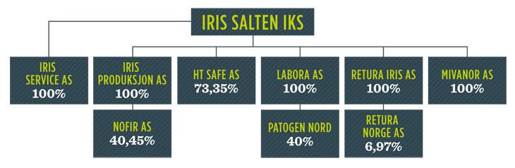 Organisasjonskart Iris-konsernet