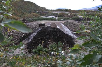 Bilde fra komposten på deponiet i Vikan utenfor Bodø.