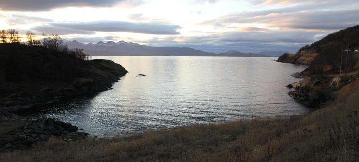 Havet utenfor Iris sitt anlegg på Vikan.
